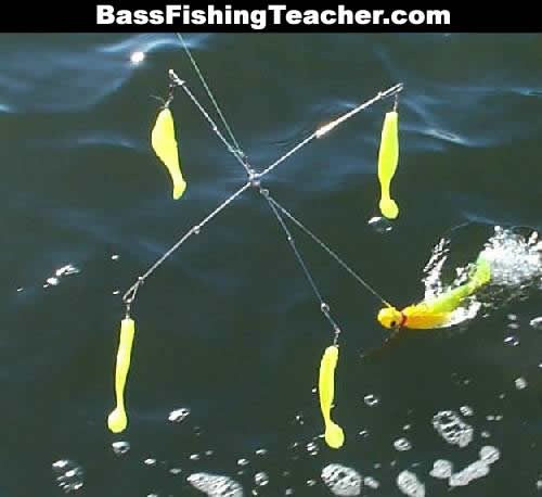 bass rigs - bass fishing teacher, Fishing Bait