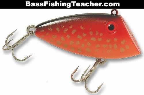 Texas Bass Rig Bass-fishing-rigs-8 Texas Rig