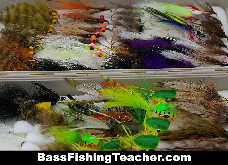 Bass fly fishing bass fishing teacher for How to fly fish for bass