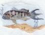 banksea-bass-fishing-4