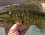 smallmouth-bass-fishing-7